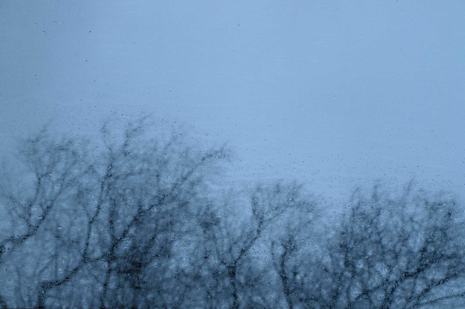 Das Bild zeigt ein Foto im Regenwetter: viele Tropfen an einem Fenster und durch das Fenster Baumspitzen fotografiert.