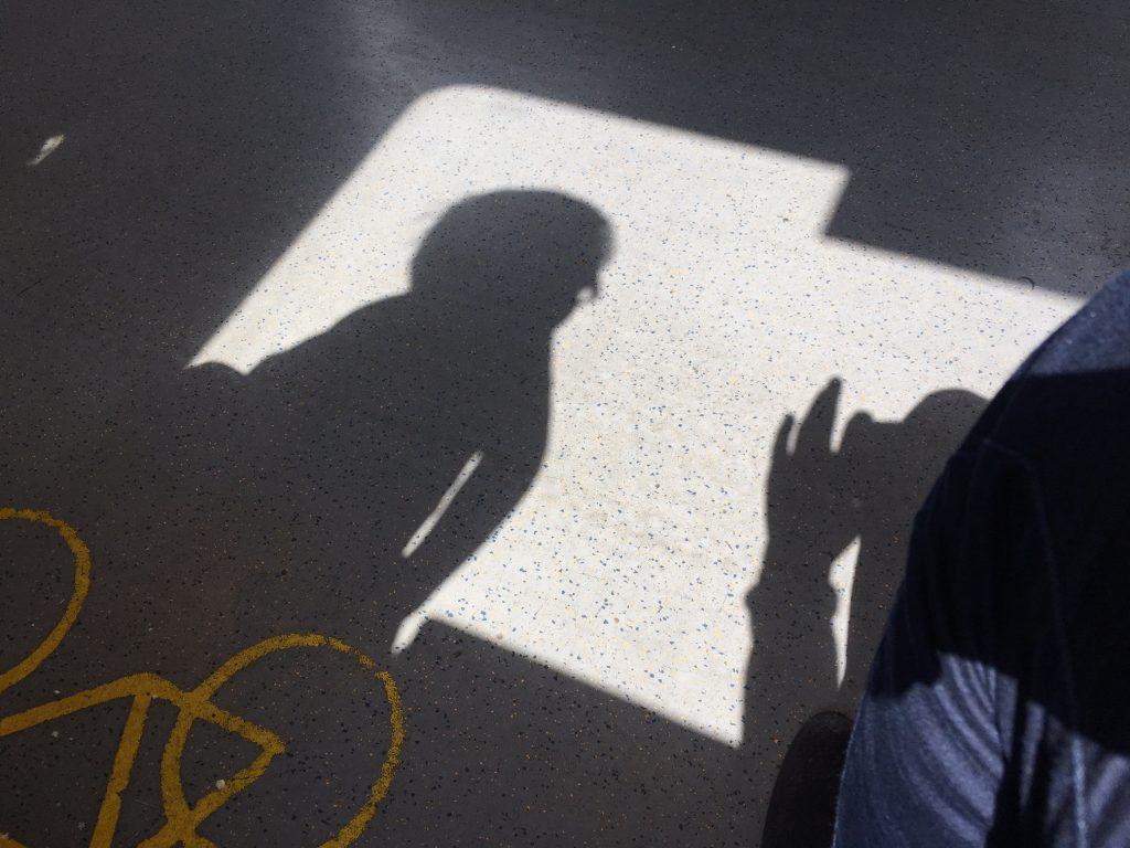 Das Foto zeigt Schattenspiele im Zug fotografiert.