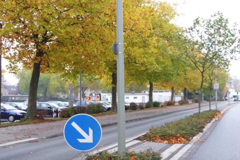 Das Foto zeigt eine Baumreihe im Oktober 2016.